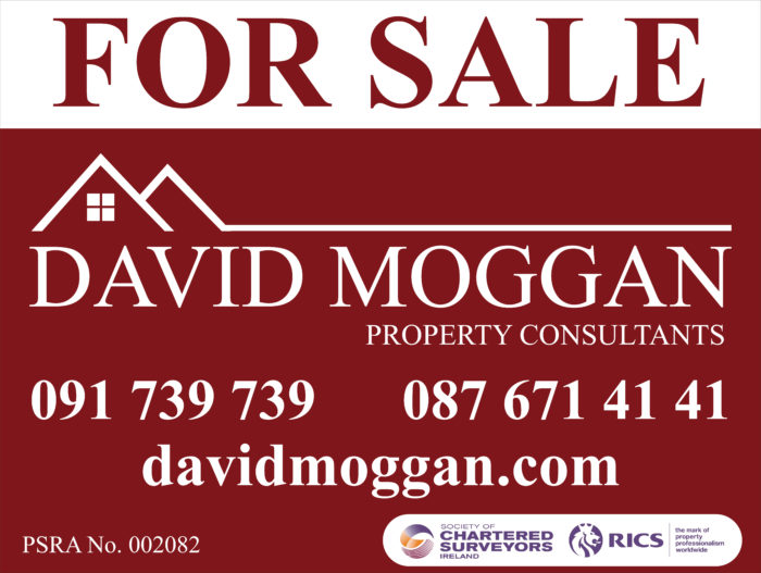David Moggan Property Consultant Galway